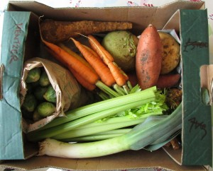 Veg in clover £13 veggie box plus eggs