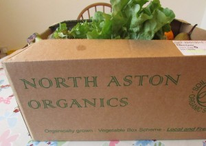 North Aston Organics Veggie Box 2