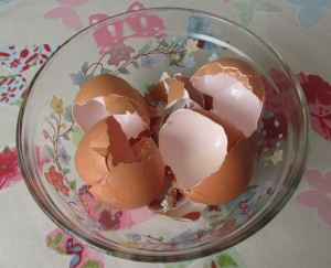 Organic farm egg shells make calcium