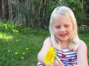 Melissa picking dandelions
