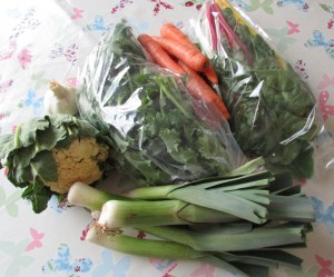 Oxford cultivate veggie bag £12