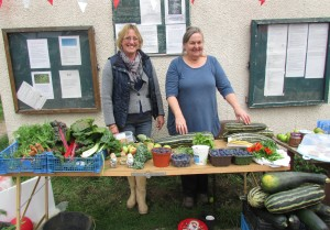 Cow Mead allotment donation sale oxford